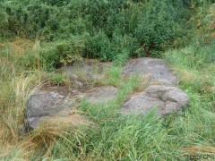 große Stein in Buchholz