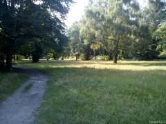 Liegewiese Schönholzer Heide
