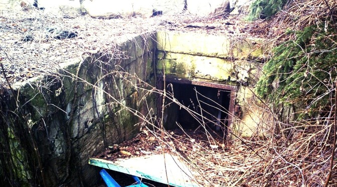 Private Bunker in Pankow