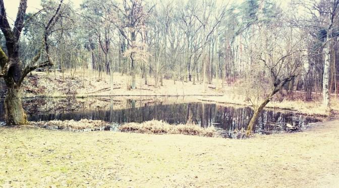 Das vergessene Dorf zwischen Rosenthal und Blankenfelde